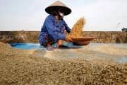 FAO cảnh báo Covid-19 có thể gây thiếu lương thực toàn cầu