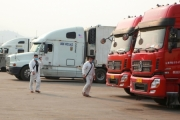 Ứng phó với Covid-19: Đẩy mạnh xuất khẩu sang Trung Quốc