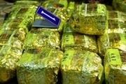 Truy nã toàn quốc đối tượng trong đường dây vận chuyển 307kg ma túy đá đi qua địa bàn