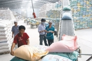 Xử lý nghiêm trường hợp găm hàng, thao túng giá gạo