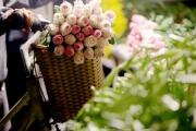 Chợ hoa đêm lớn nhất Thủ Đô vắng khách sau khi dỡ phong toả