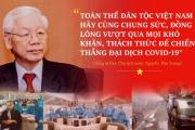 Điềm tĩnh trong bão, đó là Việt Nam