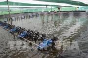 Thủy sản bị ảnh hưởng nặng bởi hạn, mặn