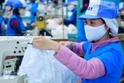 Khẩu trang Việt Nam dồn dập xuất khẩu đi châu Âu