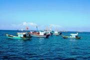 Đoàn Thanh tra của Ủy ban Châu Âu chuẩn bị kiểm tra đánh bắt hải sản ở Việt Nam