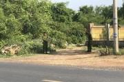 Một nài voi ở Đắk Lắk bị voi húc chết