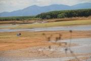 Nguy cơ muộn vụ lúa Hè Thu vì thiếu nước sản xuất
