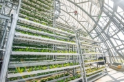 Hướng tới nền Nông nghiệp Công nghệ cao trong thời kỳ hội nhập