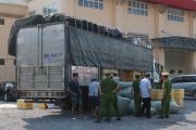 Quảng Bình: Bắt giữ vụ vận chuyển hơn 700kg thịt chó, mèo đang bốc mùi hôi thối đưa đi tiêu thụ