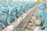 Cần phát triển thị trường tiêu thụ nội địa cá tra