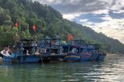 Nghệ An: Bắt giữ 6 phương tiện có hành vi khai thác thủy sản trái phép