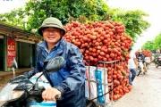 Trung Quốc sẽ tăng nhập khẩu vải thiều từ Việt Nam