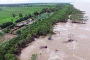 Hơn 19.000 tỉ đồng ứng phó với biến đổi khí hậu ở Cà Mau
