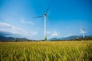 Thủ tướng yêu cầu nghiên cứu, tham khảo khuyến nghị về phát triển điện gió
