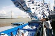 Việt Nam xuất khẩu gần 4 triệu tấn gạo trong 7 tháng đầu năm, đứng thứ 2 thế giới