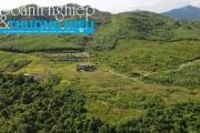 Dự án trên diện tích gần 245 ha, chỉ để cỏ mọc