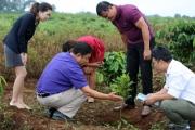 Phát triển cây mắc ca ở Việt Nam: Mô hình hợp tác mẫu mực giúp nông dân