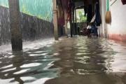 Hà Tĩnh mưa lớn, nhiều nhà ngập trong trận lụt lịch sử