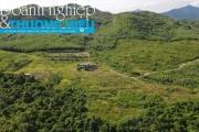 Bi hài chuyện cấp gần 245 ha đất làm dự án
