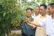 HLV tỉnh Bắc Giang: Thực hiện tốt 3 phong trào thi đua