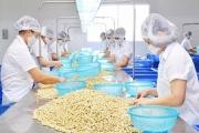 Tăng mua dịp gần Tết, xuất khẩu hạt điều sang Mỹ, Trung Quốc khởi sắc