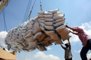 24 thương nhân không xuất khẩu gạo trong 18 tháng liên tục