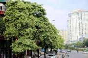 Hà Nội với mục tiêu tăng trưởng 7,5% năm 2020