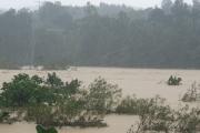 Hà Tĩnh: Điện lực Hương Sơn băng rừng, vượt lũ khắc phục sự cố điện