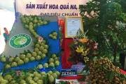 Đặc sản na hoàng hậu Mai Sơn - Sơn La