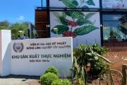 Quảng bá cà phê Việt Nam bằng mô hình vườn trải nghiệm