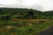 Công an vào cuộc việc 'trùng khớp' trong đấu giá khu đất 80.000m2 ở Côn Đảo