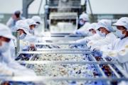 Xuất khẩu nông sản hướng tới mục tiêu 40 tỷ USD: Tạo bứt phá để cán đích