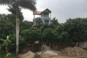 Đông Anh, Hà Nội:Có tiêu cực trong việc chiếm đất công làm nhà?