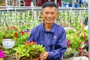 Nông dân Đà Nẵng sẵn sàng vụ hoa Tết