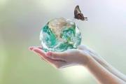 Liên hợp quốc kêu gọi các quốc gia đẩy mạnh hành động vì khí hậu sau đại dịch
