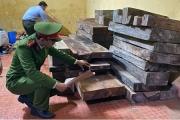 Công an Quảng Bình: Bắt giữ vụ tàng trữ hơn 2,3m3 gỗ quý không có giấy tờ hợp pháp