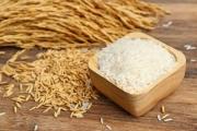 Năm 2020, Philippines đứng đầu về tiêu thụ gạo của Việt Nam