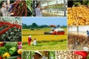 Bộ NN&PTNT đặt mục tiêu đến năm 2025 tăng trưởng xuất khẩu đạt 5%/năm