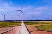 Sẽ có cơ chế mới cho điện năng lượng tái tạo