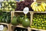 Năm 2020: Xuất khẩu rau quả đạt 3,26 tỷ USD