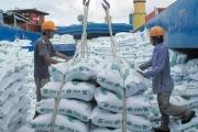 VDSC: Sản lượng xuất khẩu gạo của Việt Nam dự kiến không tăng trong năm 2021