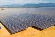 Thủ tướng: Tuyệt đối không để xảy ra tình trạng phát triển ồ ạt điện mặt trời theo phong trào