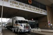 Xuất hơn 14.000 tấn thanh long qua cửa khẩu Lào Cai