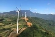 Phú Yên chuyển hơn 11ha đất rừng để làm dự án điện gió hơn 1.700 tỷ đồng