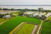 ĐBSCL chuyển hướng: Khi nông dân trúng lớn nhờ... hạn mặn