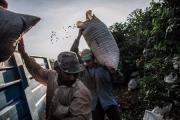 Nguồn cung đứng trước nguy cơ thiếu hụt, giá cà phê thế giới sẽ tăng
