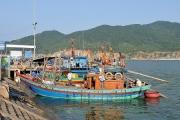 Thêm 3 cảng cá đủ điều kiện xác nhận nguồn gốc thuỷ sản từ khai thác