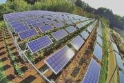 Danh tính các ông chủ phía sau dự án điện mặt trời 842,9 tỷ