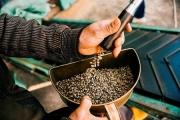 4 tháng đầu năm 2021 xuất khẩu cà phê thu về 1,06 tỷ USD