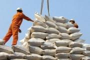 Bộ Công Thương vào cuộc kiểm tra các đơn vị nhập khẩu gạo từ Ấn Độ